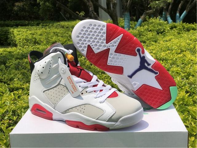 Authentic Air Jordan 6 Hare 2020