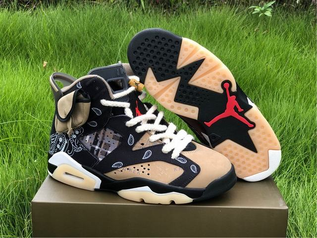 Authentic Air Jordan 6 TS