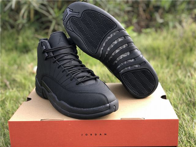 Authentic Air Jordan 12 WNTR
